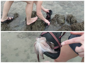 I, admittedly, used my sandal to pick up a lot of squishy things. Haha!