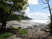Playa Montezuma on a sunny morning!