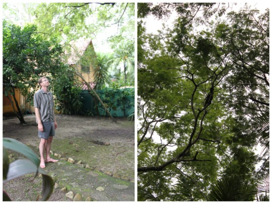 Bryce checking out the Howler Monkeys that came out later in the afternoon on the last day.