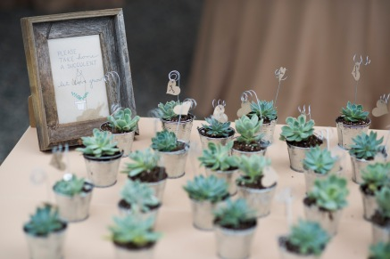 "Our succulent escort ""cards"" that guests could take home."