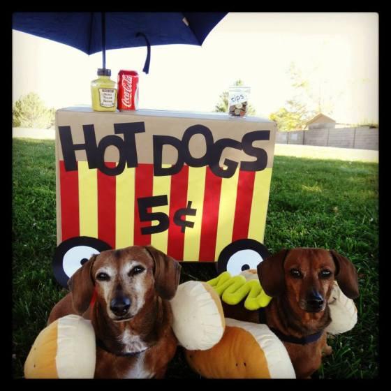Dachshund Hotdog Stand