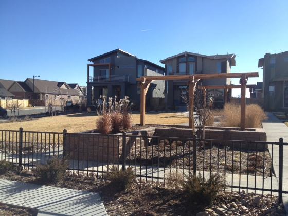 The shared courtyard at the Wonderland model homes in Stapleton. These courtyards were much roomier than the potential one we would have.