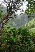 VIew of Hanakapi'ai Falls as we began approaching it