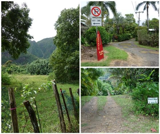 kauai day 10-5