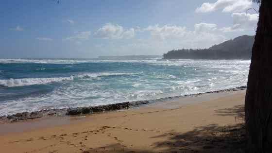 kauai day 11-1