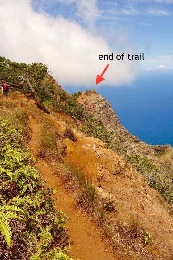 Kalepa Ridge Trail