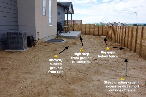 midtown backyard 2.jpg