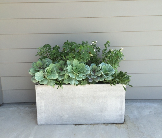 west elm cityscape planter grey