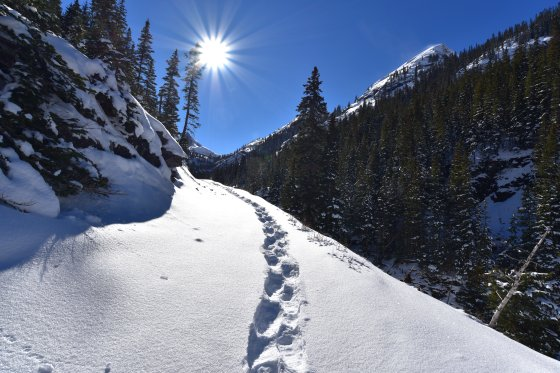 bridal veil falls trail 2