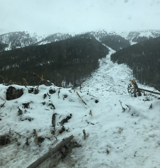 colorado roadside avalanche