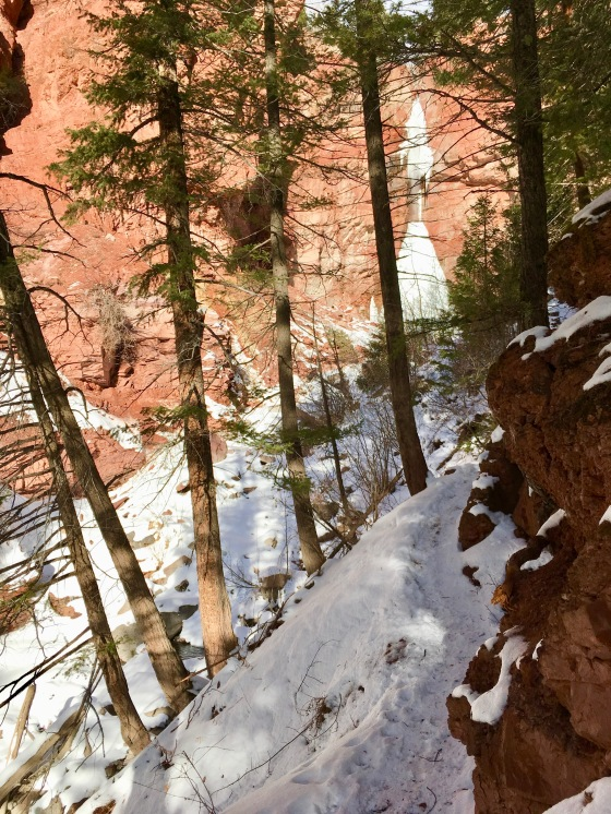 cornet creek trail 2