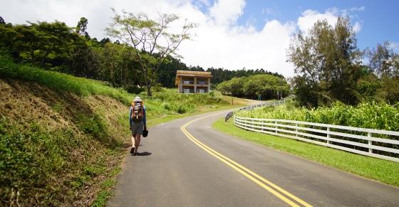 road to waipio lookout