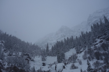 telluride december 2016 snowy landscape