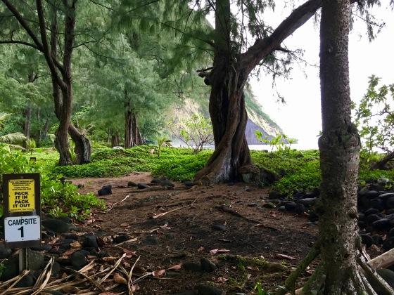 waimanu campsite 1
