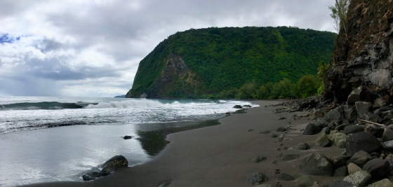 waimanu valley beach views