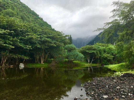 waimanu valley stream boat