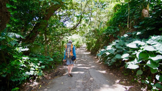 waipio valley road to beach